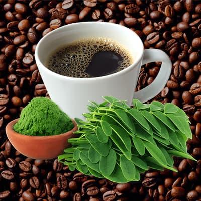 donde comprar cafe de moringa